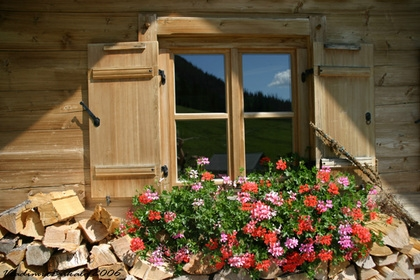 Holzhütte Sommer